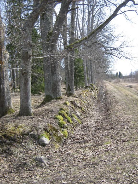 Morna mõisa piirdemüürid Parki piirav kiviaed 15.04.2011 A.Kivi