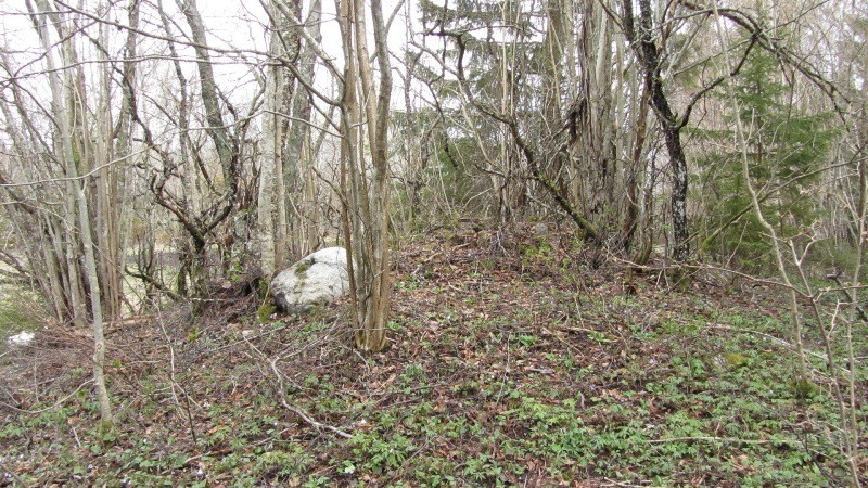 Vaade kivikalmele reg nr 12297 läänest. Foto: Karin Vimberg, 04.05.2011.
