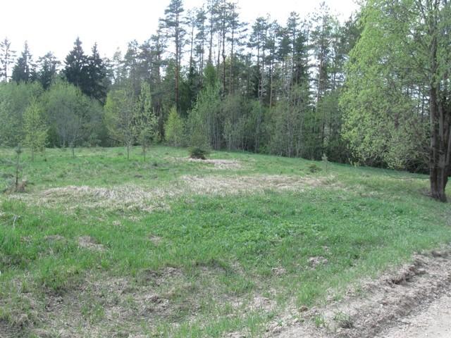 """Kalmistu """"Lastekalmetumägi"""". Foto: Tõnis Taavet, 11.05.2011."""