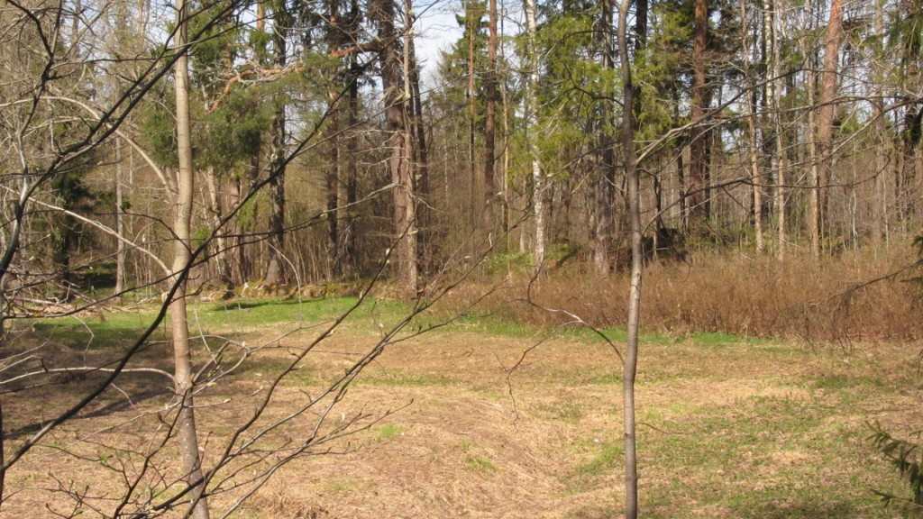 välispiire maanteelt vaadatuna Nele Rent 28.04.2011