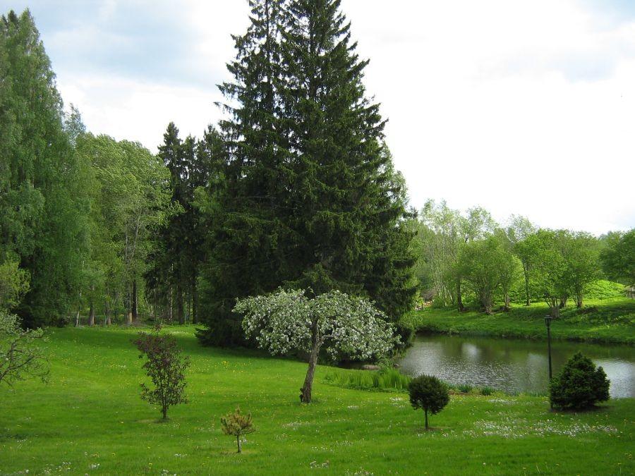 Peetri mõisa peahoone juures olev park Foto Anne Kivi 24.05.2011