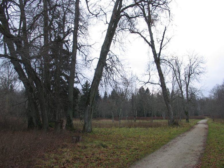 Autor Ulla Kadakas  Kuupäev  03.12.2006