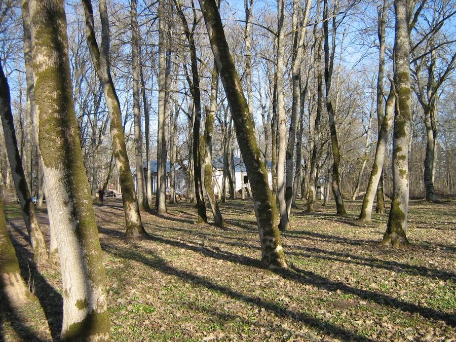 Massu park  Kalli Pets 22.04.2011