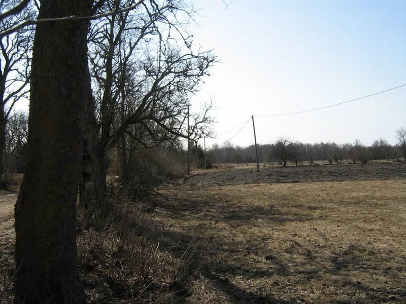 Asula põhjapiirilt lõunasse, teest lääne poole. 21.04.2011.