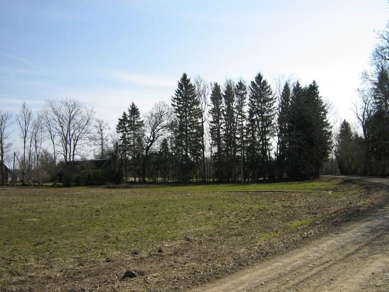 Asula põhjapiirilt teest ida poole. 21.04.2011.