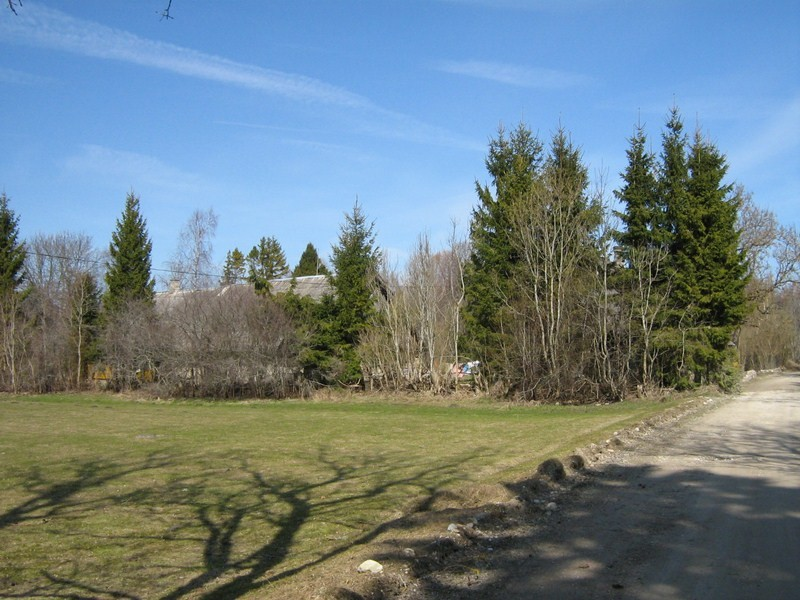 9900 asula tähise juurest põhja suunas. 21.04.2011.