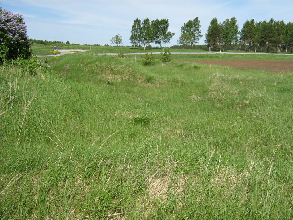 Kalmistu reg nr 10804. Foto: Ingmar Noorlaid, 02.06.2011.