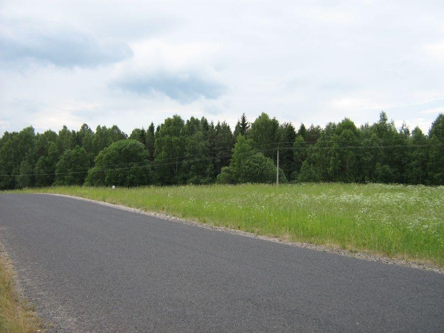 Vaade kalmele Abja-Penuja maanteelt. Foto: Anne Kivi, 14.06.2011.
