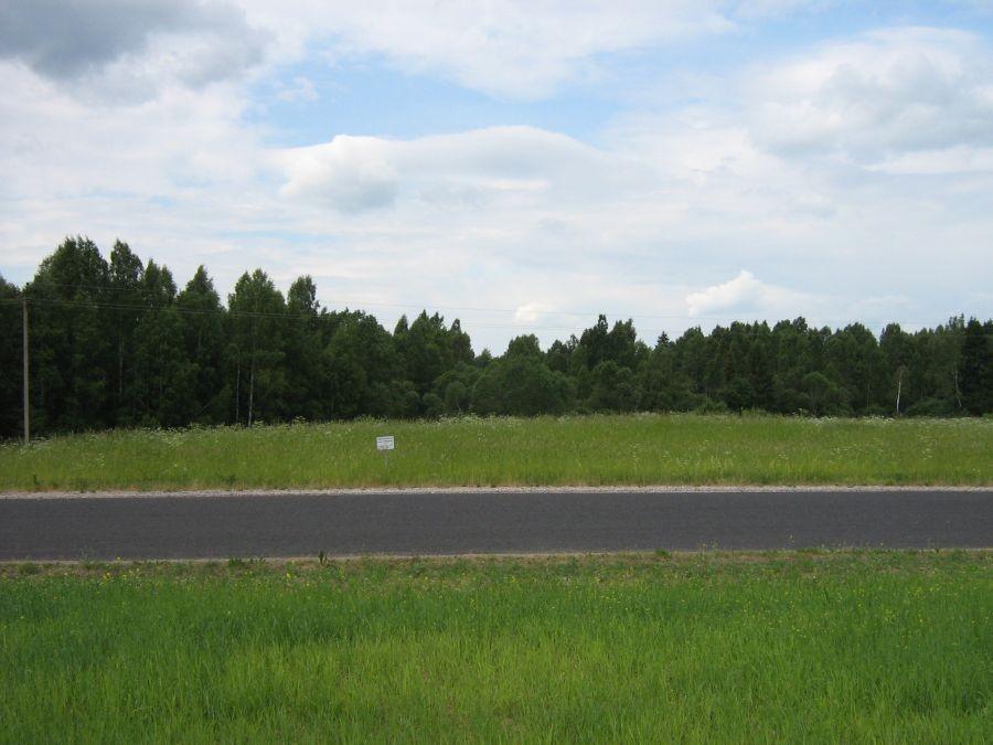 Vaade kalmele Abja-Penuja maantee äärest. Foto: Anne Kivi, 14.06.2011.