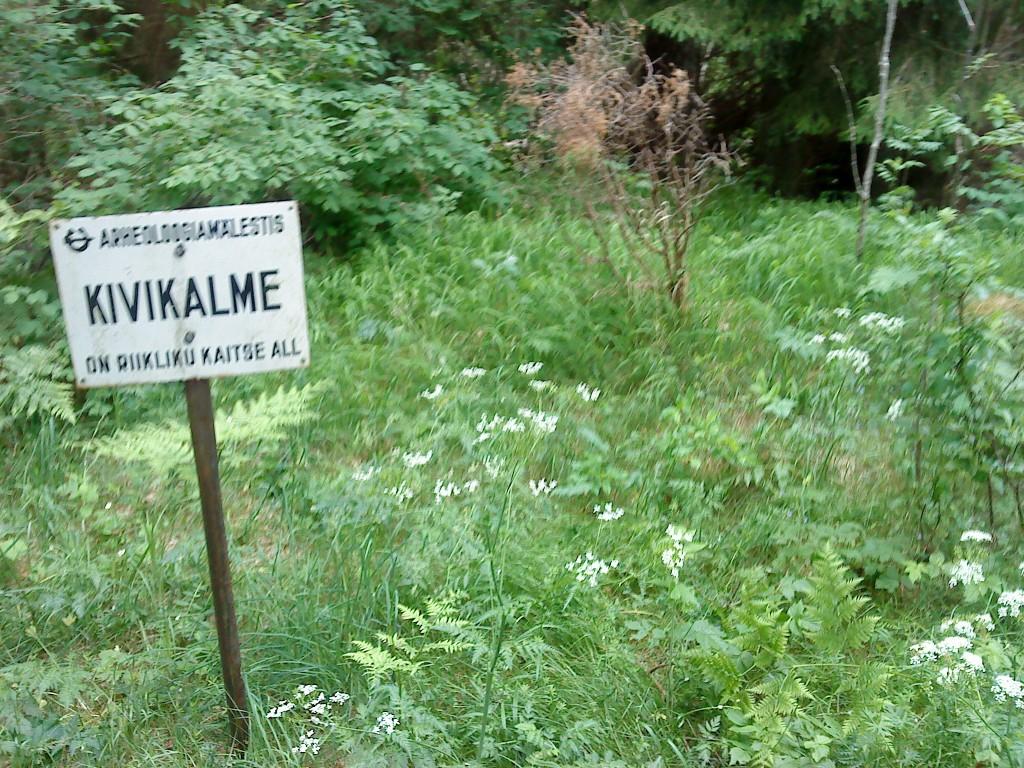 Vaade mälestisele ja selle tähisele. Foto: Karin Vimberg, 17.06.2011.