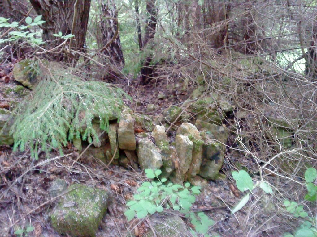 Kalme asukohaks märgitud kohas asuvad lubjapõletusahju jäänused. Foto: Karin Vimberg, 17.06.2011.