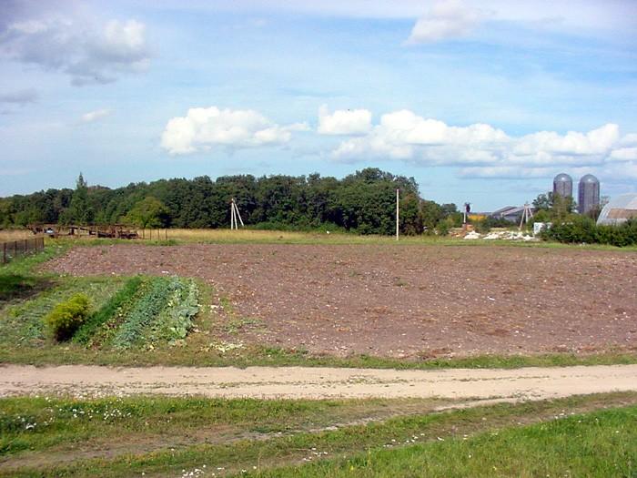 Vaade asulakoha keskmes paiknevale põllule. 19.08.2003 A. Rudi