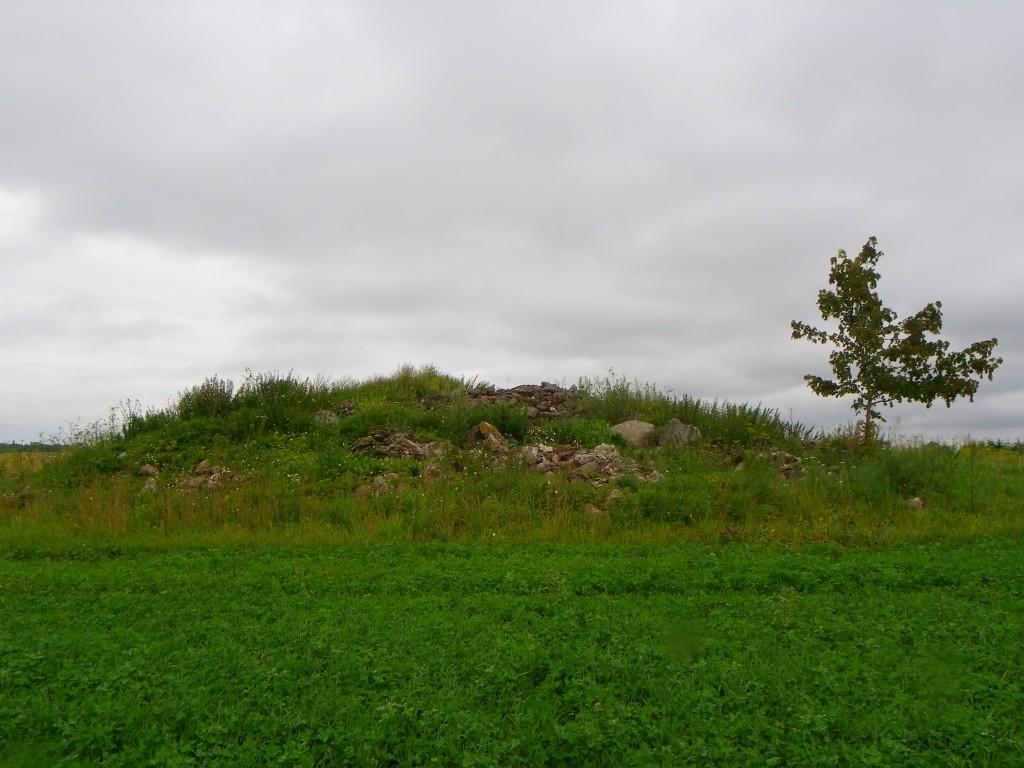 Vaade kalmele lõunast. Foto: Triin Äärismaa, 19.07.2011.