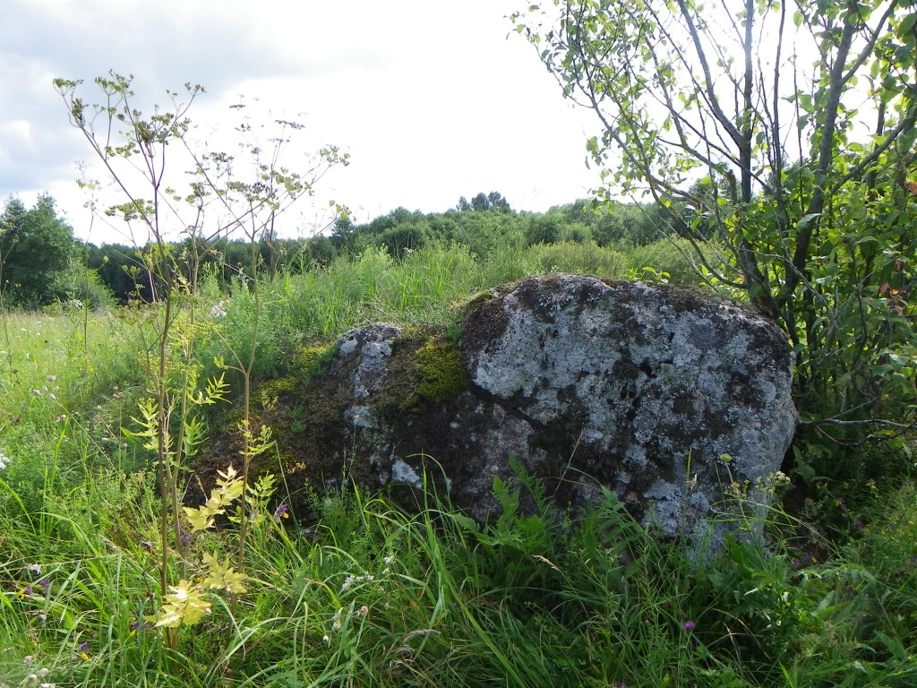 Foto: Triin Äärismaa, 02.08.2011