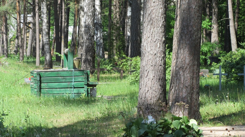kaev 09.06.2011 Nele Rent