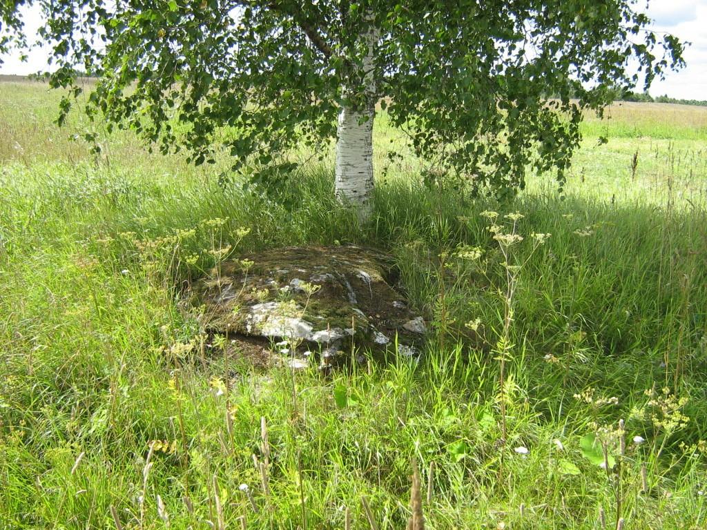Lohukivi reg nr 10251. Foto: Ingmar Noorlaid, 27.07.2011.