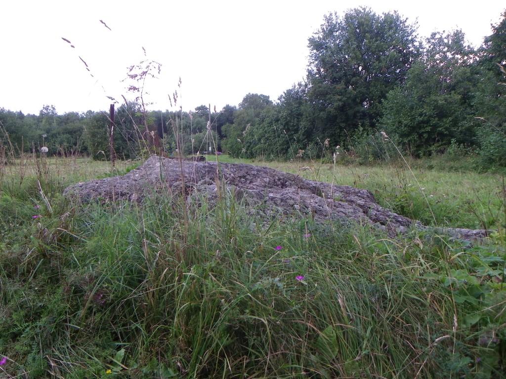 Vaade kultusekivile idast. Foto: Triin Äärismaa, 16.08.2011