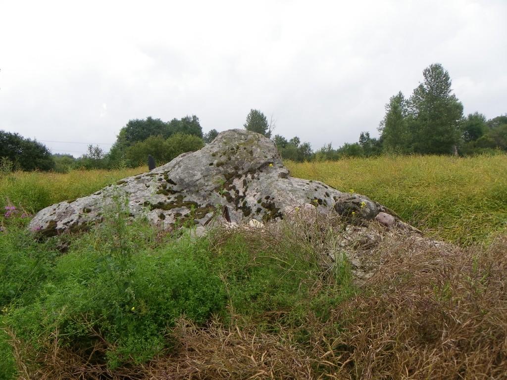 Foto: Triin Äärismaa, 23.08.2011