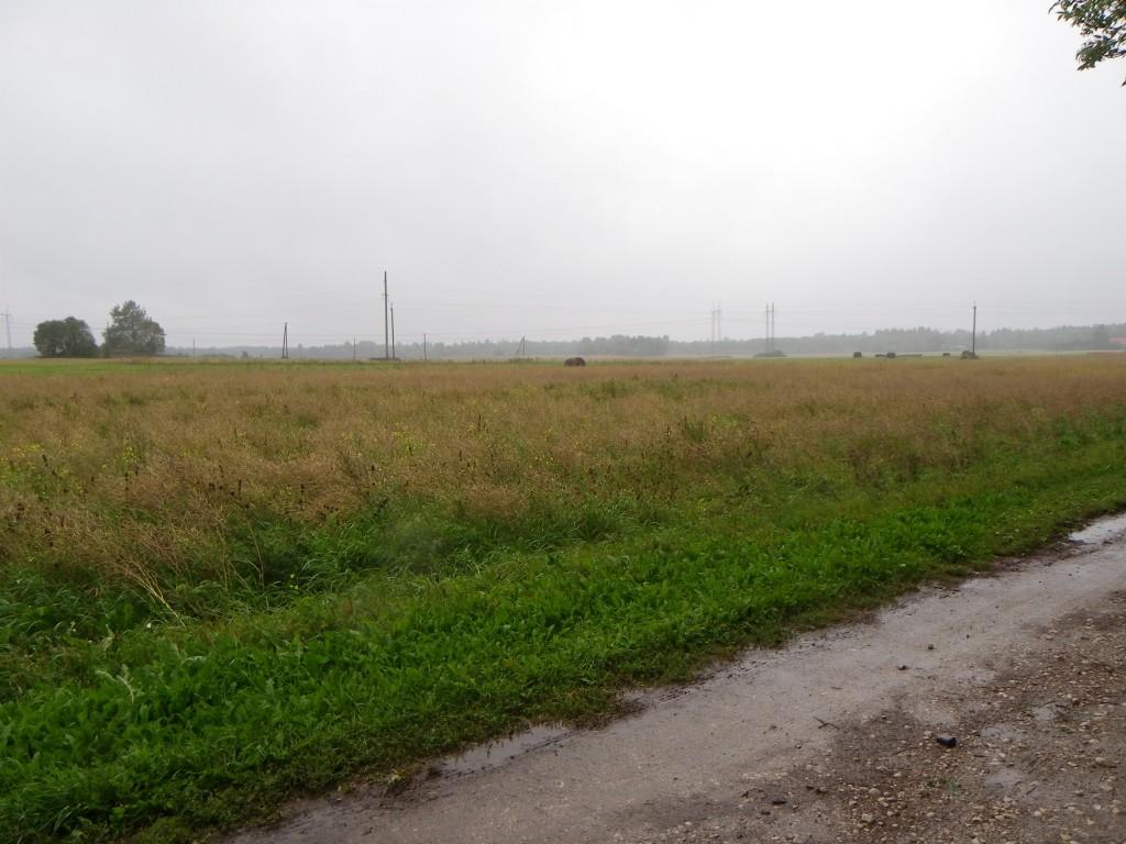 Foto: Triin Äärismaa, 06.09.2011