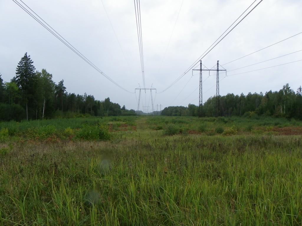 Vaade kalmistule idast. Foto: Triin Äärismaa, 13.09.2011.