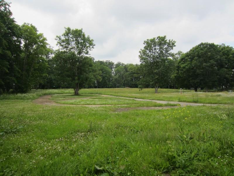 15625 Avanduse mõisa park. 07.07.2011 Anne Kaldam