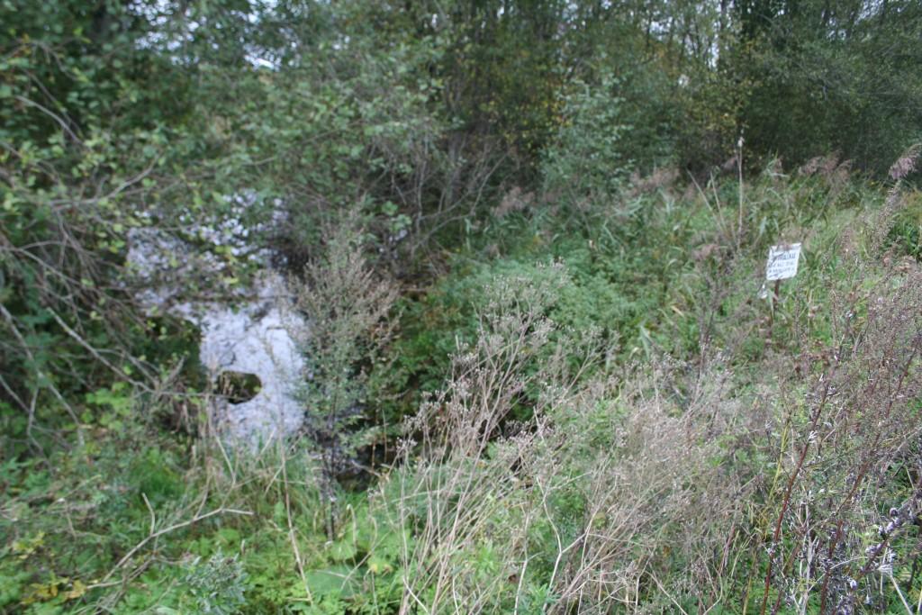 Vaade allikale ja selle tähisele ida poolt. Foto: Armin Rudi, 20.09.2011