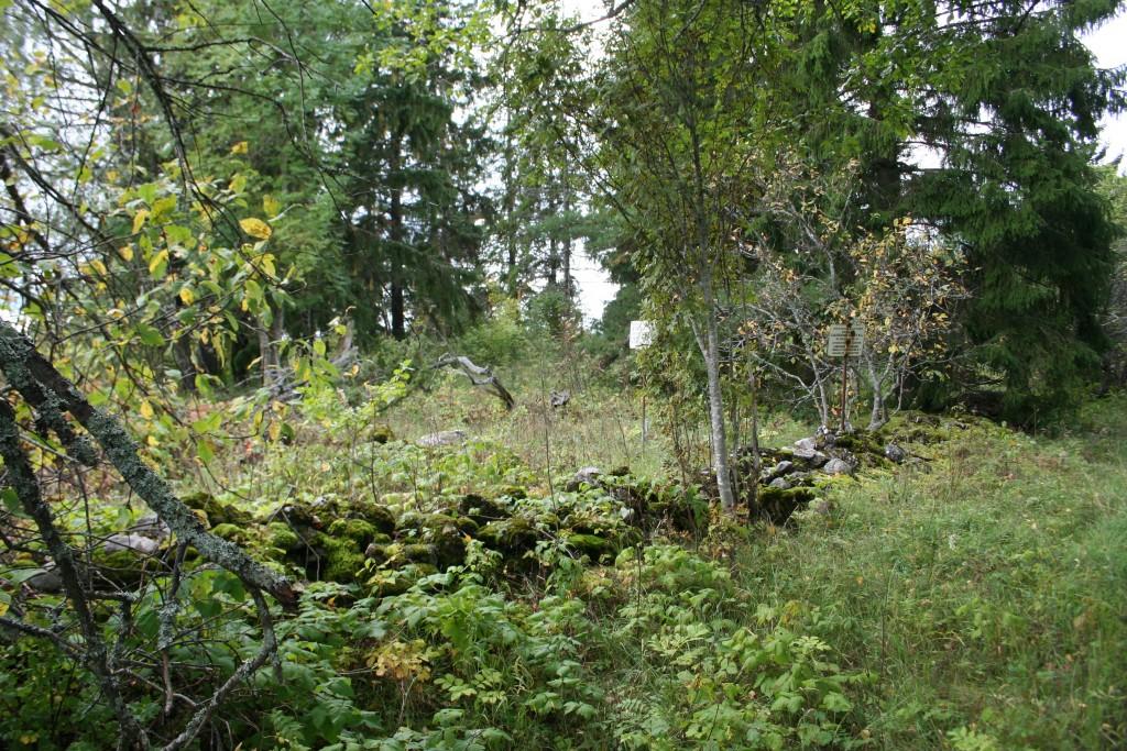 Vaade kalmele kirde poolt, vanalt külavaheteelt. Foto: Armin Rudi, 20.09.2011.