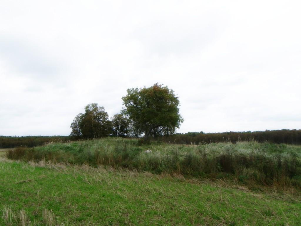 Foto: Triin Äärismaa, 20.09.2011