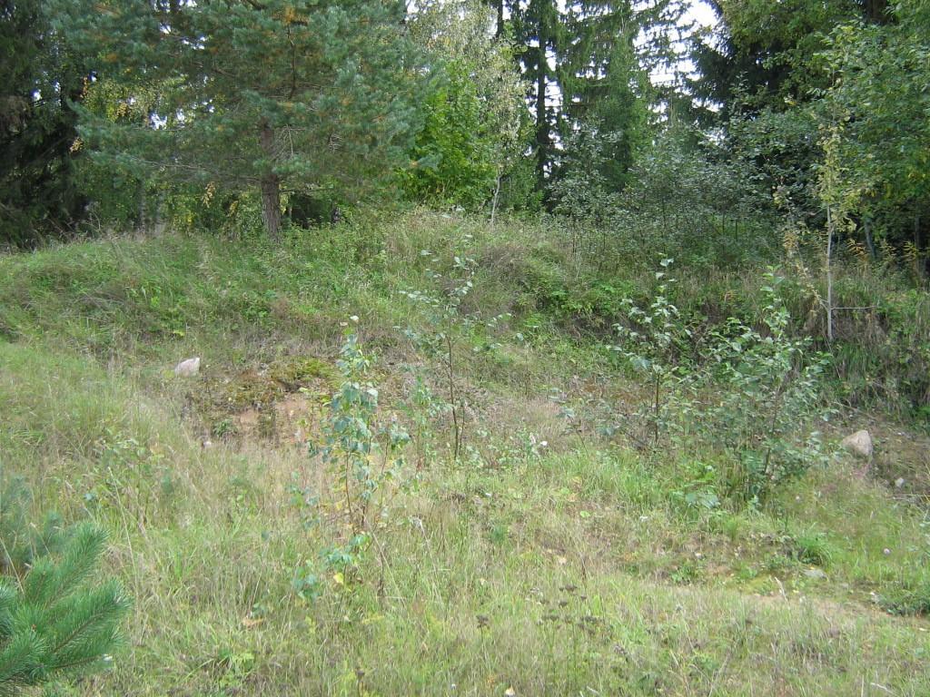 Kivikalme reg nr 10383. Foto: Ingmar Noorlaid, 20.09.2011.
