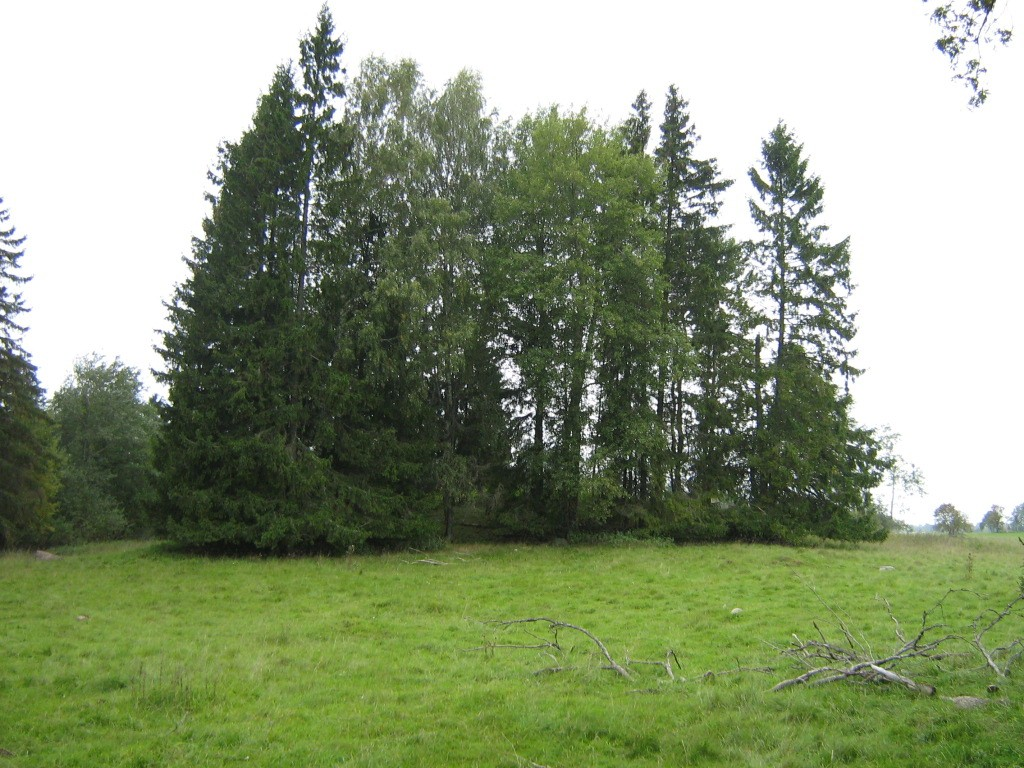 "Kalmistu ""Kalmumägi"" reg nr 10535. Foto: Ingmar Noorlaid, 21.09.2011."