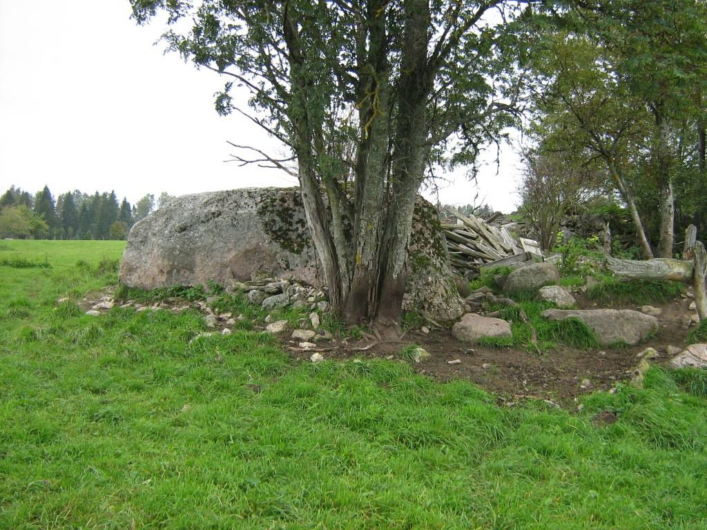 Lohukivi reg nr 10541. Foto: Ingmar Noorlaid, 21.09.2011.