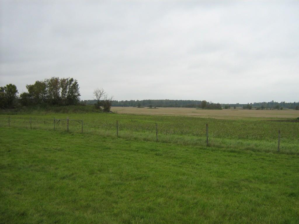 Kalmeväli, kus asub kivikalme reg nr 10539. Foto: Ingmar Noorlaid, 21.09.2011.