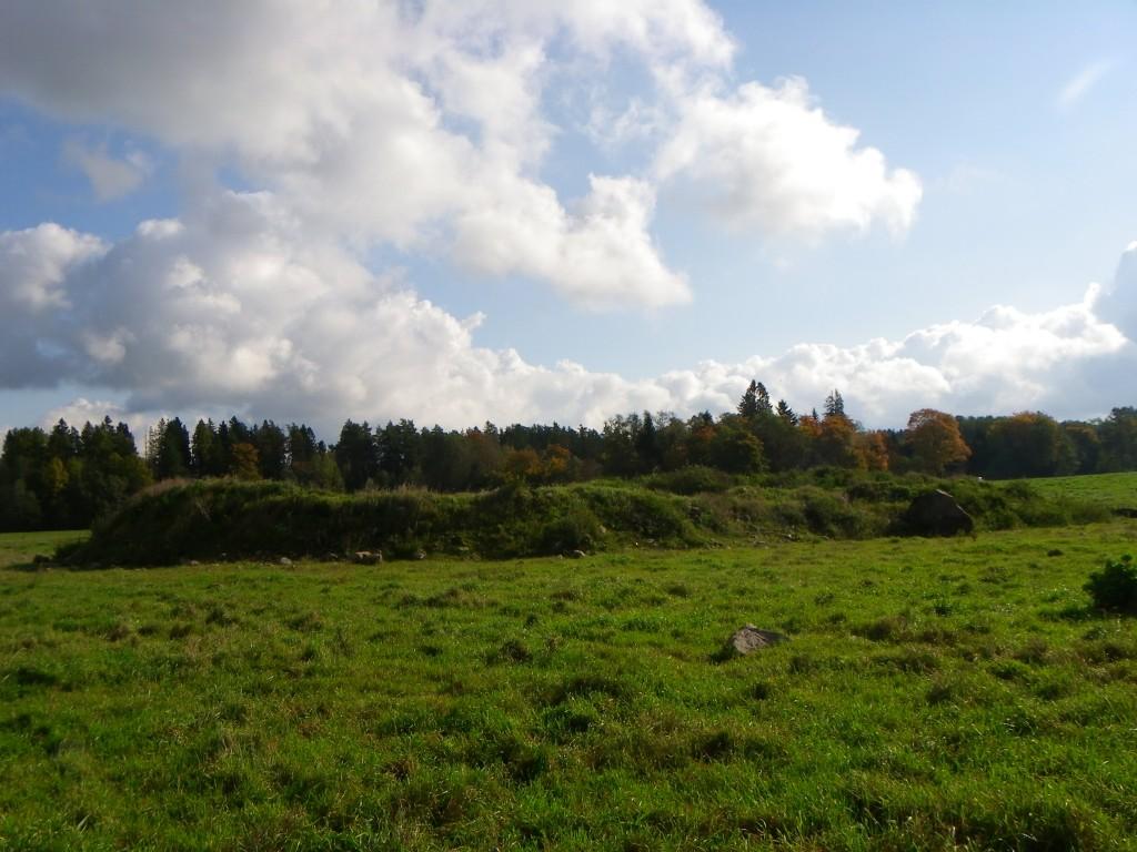 Vaade kalmistule läänest. Foto: Triin Äärismaa, 27.09.2011.