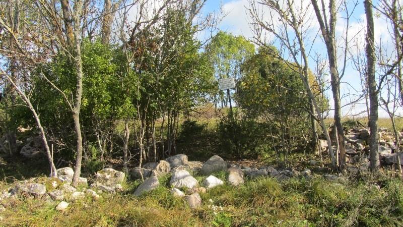Vaade mälestise tähisele ning kalmistu alale läänest. Foto: Karin Vimberg, 27.09.2011.