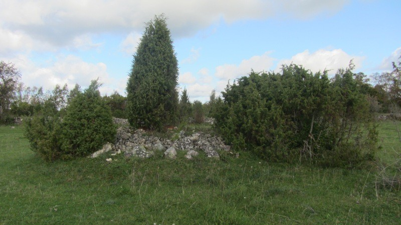Vaade kivikalmele reg nr 12451 põhjast. Foto: Karin Vimberg, 27.09.2011.