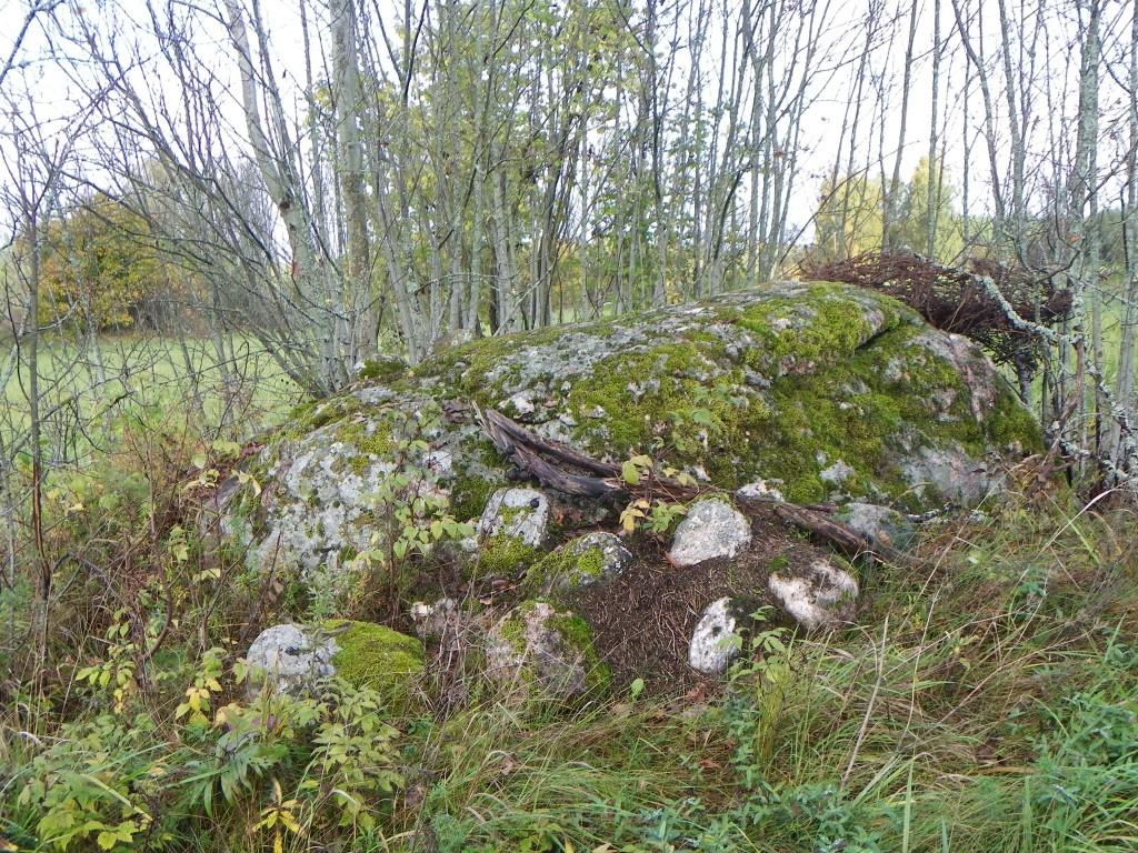 Foto: Triin Äärismaa, 04.10.2011