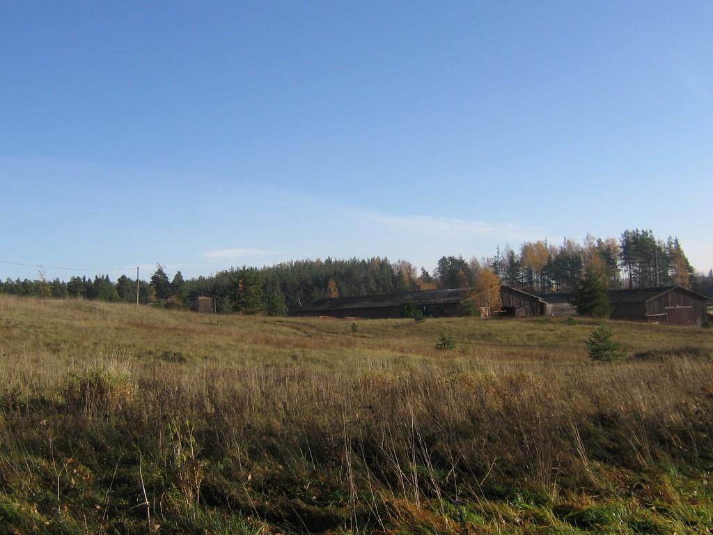 Vaade tee pealt kalmistu alale. Paremal tegutseva saekaatri hooned. Foto: Viktor Lõhmus, 25.10.2011.