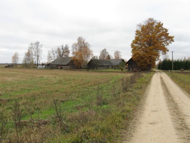 Asulakoht. Foto: Tõnis Taavet, 26.10.2011.