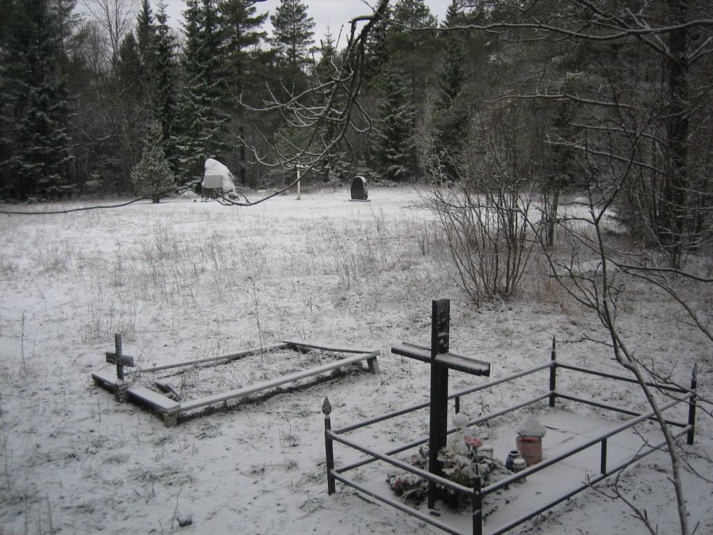 Vaade kalmistule  Autor S. Konsa  Kuupäev  12.01.2007