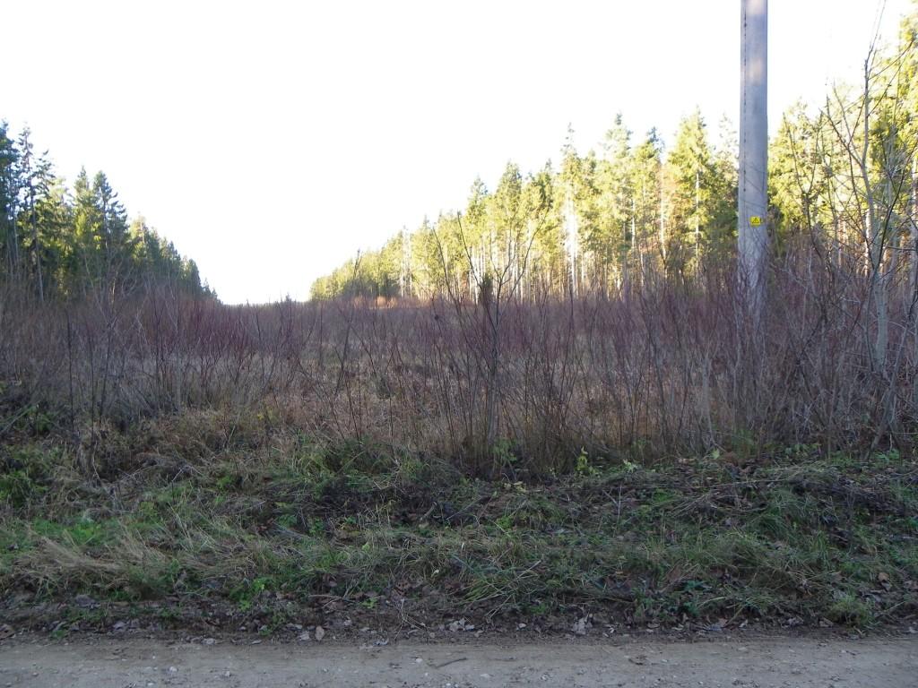Vaade muistsetele põldudele idast. Foto: Triin Äärismaa, 15.11.2011.