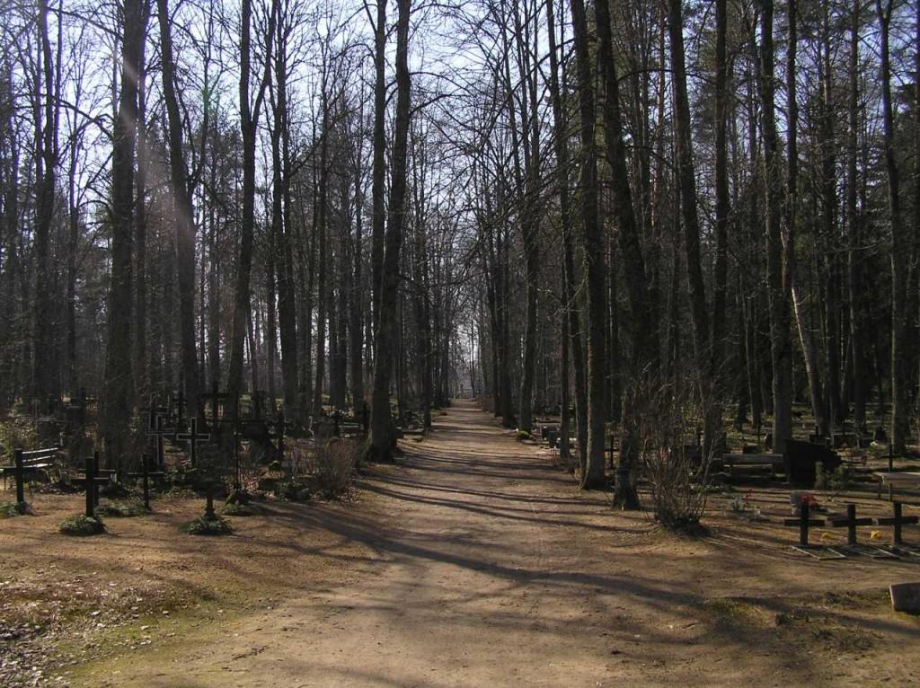 Vaade kalmistu peateelt värava suunas  Autor Martti Veldi  Kuupäev  28.03.2007