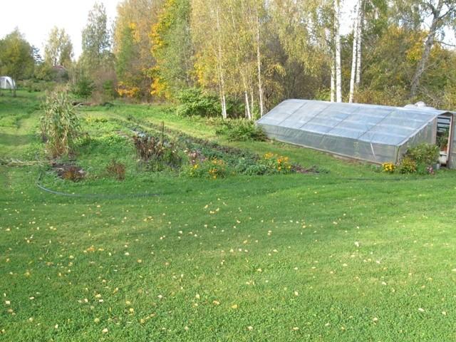 Asulakoht. Foto: Tõnis Taavet, 04.10.2011.