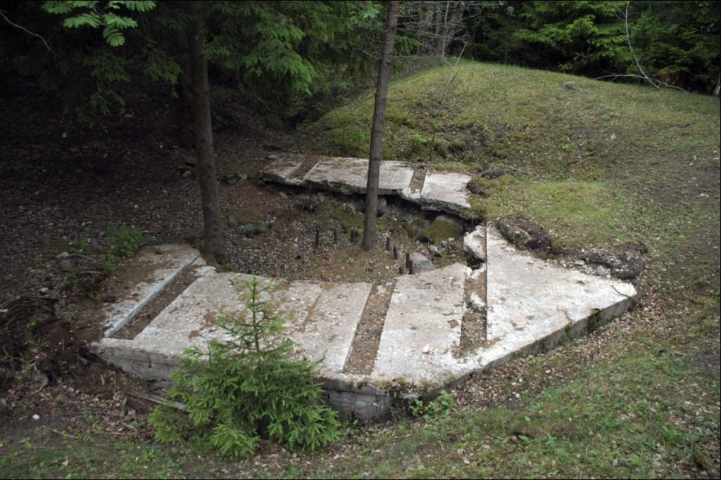 Kahurialus 1 (idapoolne)  Autor M. Mõniste  Kuupäev  26.06.2006