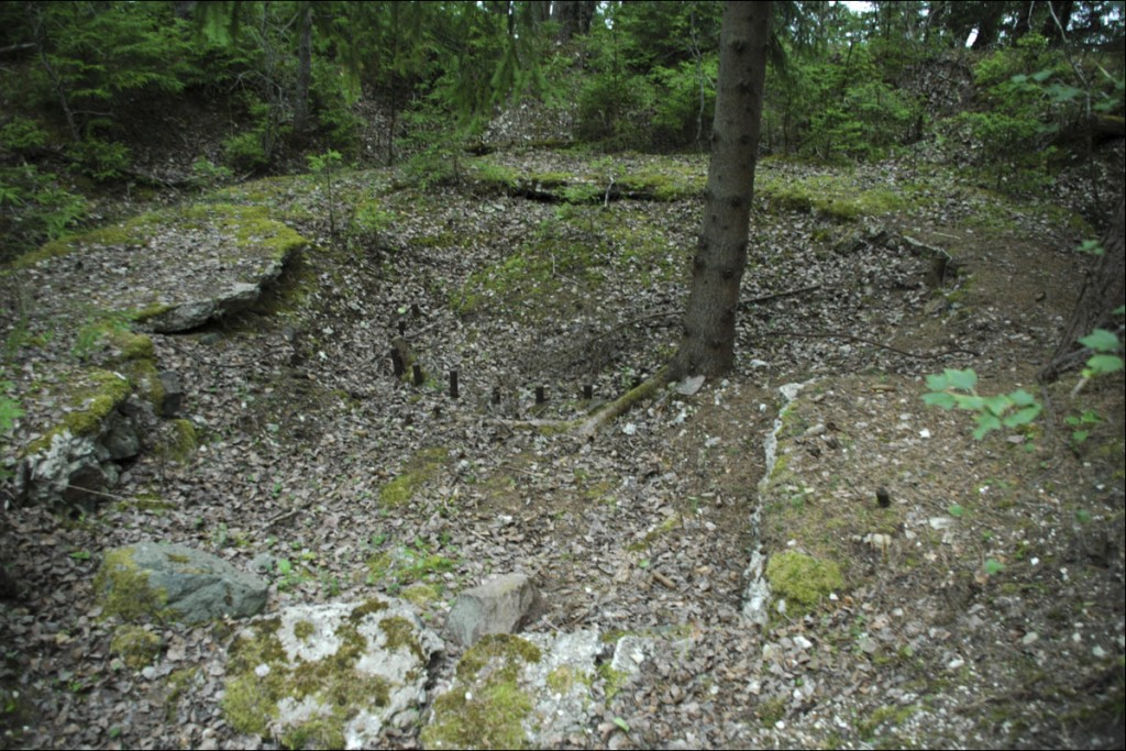 Kahurialus 3 (läänepoolne)  Autor M. Mõniste  Kuupäev  26.06.2006