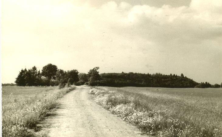 Linnamägi. Foto: H. Joonuks, 1971.