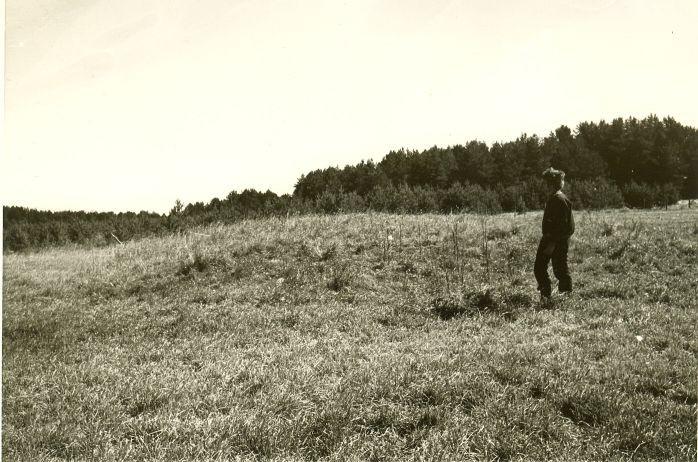 Kivikalme - edelast. Foto: H. Joonuks, 1979.