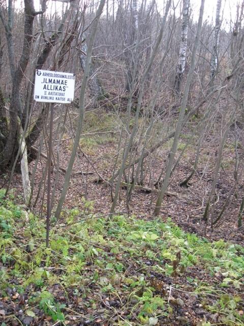 """Ohvriallikas """"Ilmamäe allikas"""". Foto: Tõnis Taavet, 09.11.2011."""