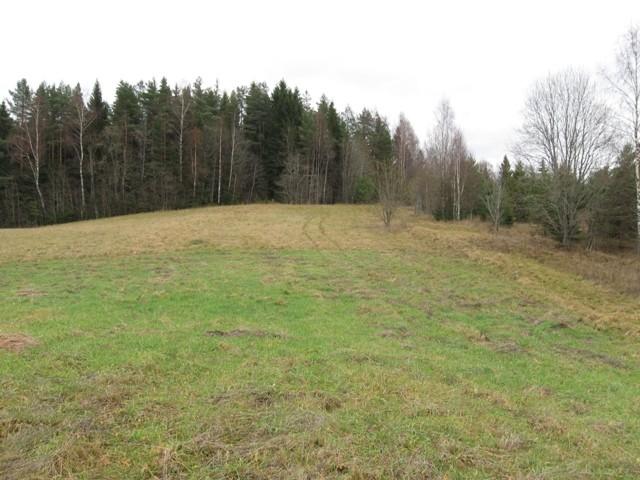 """Kalmistu """"Kalmesaare mägi"""". Foto: Tõnis Taavet, 09.11.2011."""