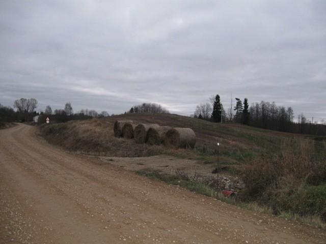 Kalmistu. Foto: Tõnis Taavet, 09.11.2011.