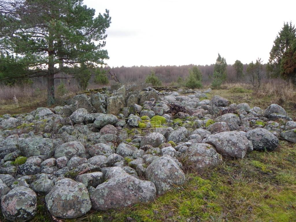Foto: Triin Äärismaa, 20.12.2011